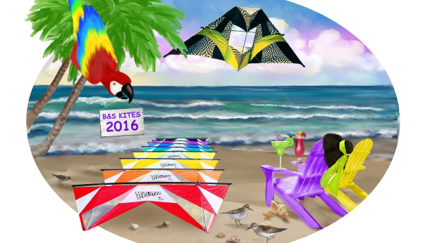 SPI Kite Fest ~ Outdoor Kite Exhibition